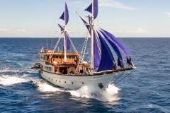 Ocean-Pure-sailing
